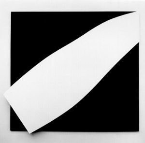 elsworth kelly