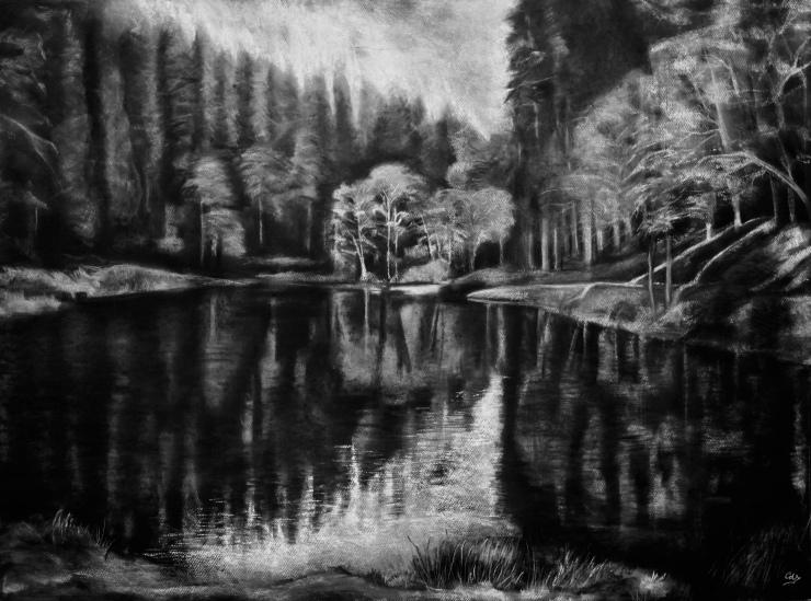 Evening Light on Soudley Pond