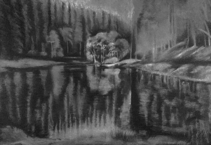 pond series - work in progress 190119